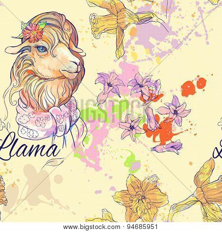 seamless pattern of cute lama