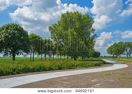 Bicycle path meandering through a rural landscape
