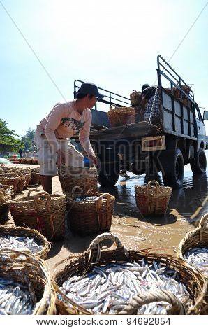 Lagi, Vietnam - February 26, 2012: Local Fishermen Are Uploading Fisheries Onto The Truck To The Pro