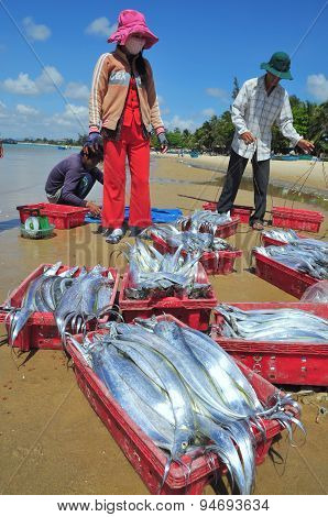 Lagi, Vietnam - February 26, 2012: Local Fishermen Are Selling Their Fishes To The Locals And Touris