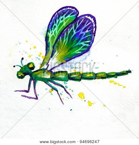 Green Watercolor Dragonfly