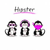 foto of interpreter  - Three Monkeys symbolizing the idea of not seeing - JPG