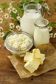 foto of milk products  - assortment of dairy products  - JPG