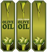 foto of virginity  - Collection of three labels with green olives and oil text Olive oil and Extra virgin - JPG