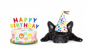 foto of birthday hat  - french bulldog with happy birthday cake and candles a party hat eyes closed isolated on white background - JPG