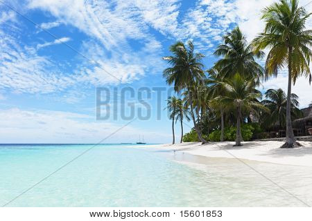Beautiful tropical beach with palms. Turquoise lagoon on foreground.