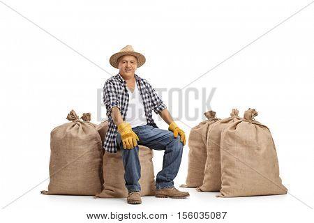 Joyful elderly farmer sitting on burlap sacks isolated on white background