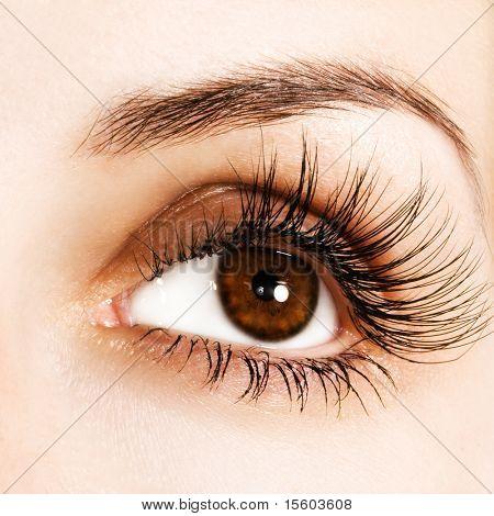 Frau Auge mit extrem langen Wimpern