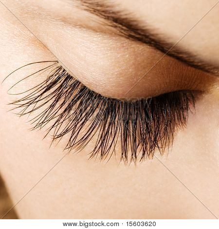 Woman eye with extremely long eyelashes