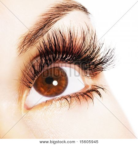 Olho de mulher marrom com cílios extremamente longos