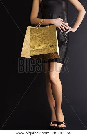 Elegante Frau mit Einkaufstüten Urlaub. Platz für Text.