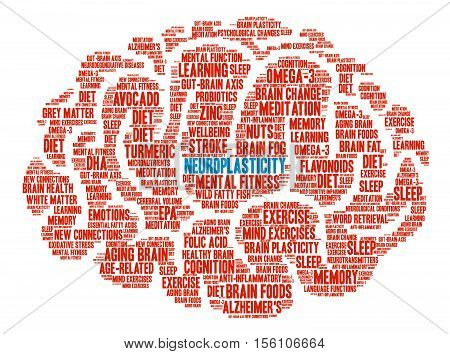 Neuroplasticity Brain word cloud on a white background.
