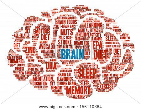 Brain word cloud on a white background.