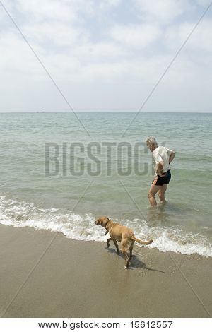 Senior man with his dog on the beach