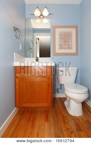 Blue Bathroom With Sink And Toilet