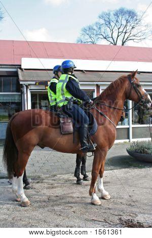 Horses Police In City
