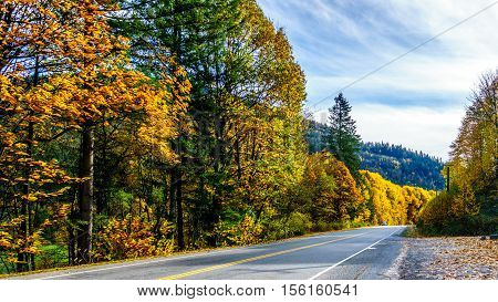 Highway 7, the Lougheed Highway near the settlement of Deroche in Fall Colors in the Fraser Valley of British Columbia, Canada