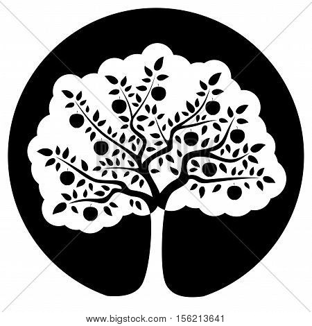 vector apple tree isolated on black round