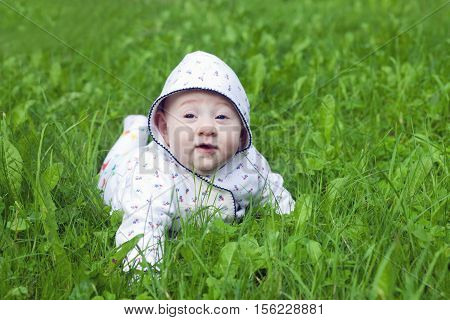 Cute baby crawling on the lawn in deep green grass
