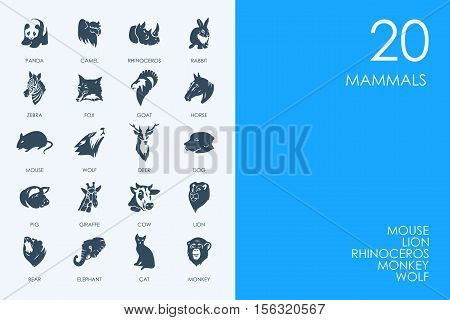 BLUE HAMSTER Library mammals vector set of modern simple icons