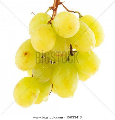Hanging bunch of sweet ripe white grapes isolated over white background
