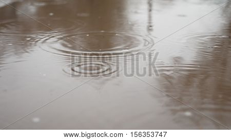 raindrops in puddle water blue splash autumn nature overcast gloomily