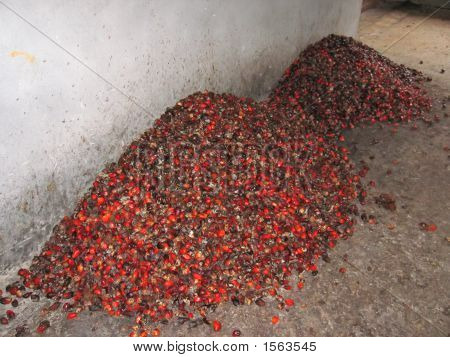 Some African Typical Small Fruits On A Warehouse, Cameroon, Africa