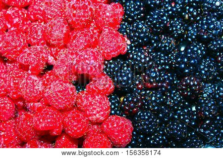 heap of ripe berries of blac kberry and raspberry
