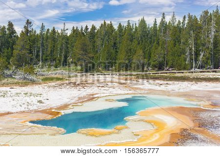 Beautiful thermal pool in Upper Geyser Basin (Old Faithful Area). Yellowstone National Park, Wyoming. USA