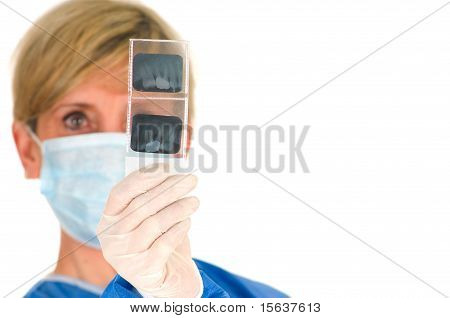 woman dentist holding dental radiography in white background