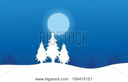 At night spruce Christmas landscape collection stock