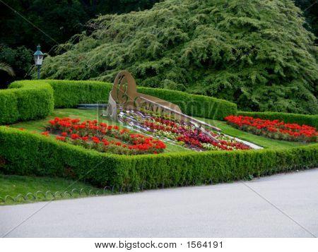 Unsere Garten