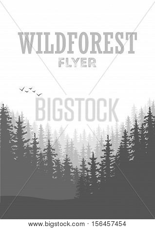 Wild coniferous forest flyer background. Pine tree landscape nature wood natural panorama. Outdoor camping design template. Vector illustration