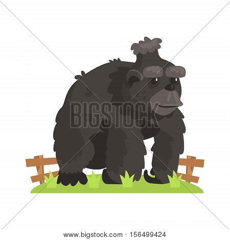 Large Black Gorilla Wih Scruffy Fur Standing On Green Grass Patch In Open Air Zoo Enclosure. Wild Animal Enclosed In Outdoor Zoological Park Funky Style Illustration On White Background.