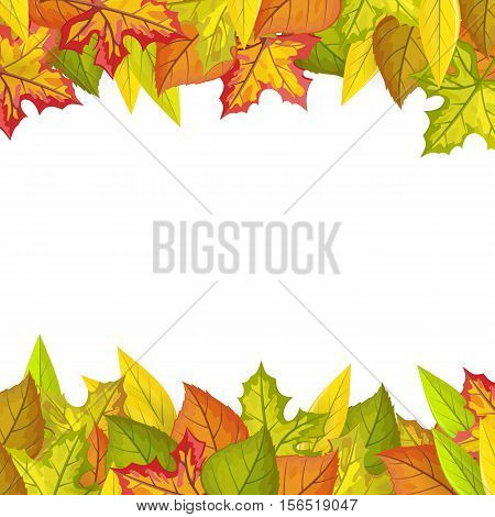 Autumn leaves vector frame. Flat design. Colored leaves of variety trees on top and bottom side with white free space in the middle. For decoration, nature concept, seasonal promotion and ad design