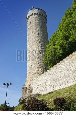 Tall Hermann - a tower of the Toompea Castle on Toompea hill. Tallinn Estonia