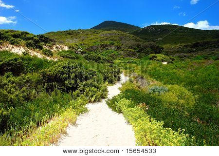 Sand Trail at Wilsons Promontory