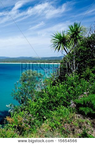 Tropical Vegetation and water