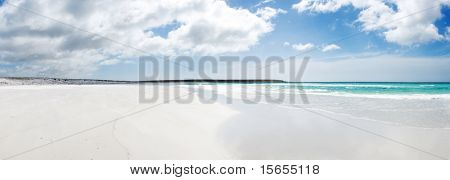 Beautiful beach Volunteer Point - Falkland Islands