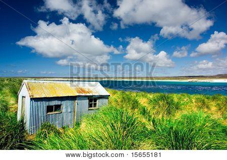 Kidney Island, Falkland Islands