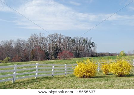 Rural Virginia Landscape
