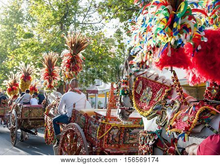 Ornamental and colorful feather on a sicilian cart during a folk festival