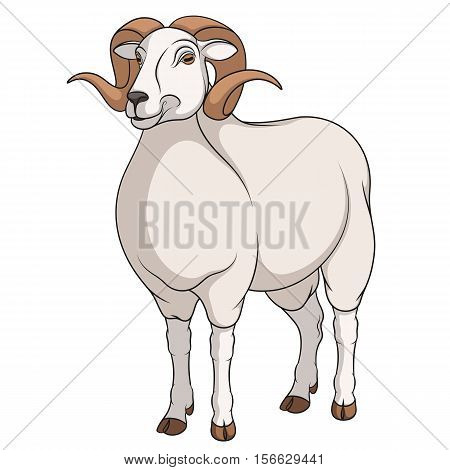 Color vector image of a ram. Object on a white background