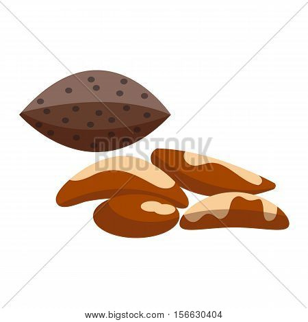 Heap of various kinds of nuts. Pile of nuts brazil nut isolated on white. Pile of nuts organic healthy seed ingredient and pile of nuts heap nature nuts.