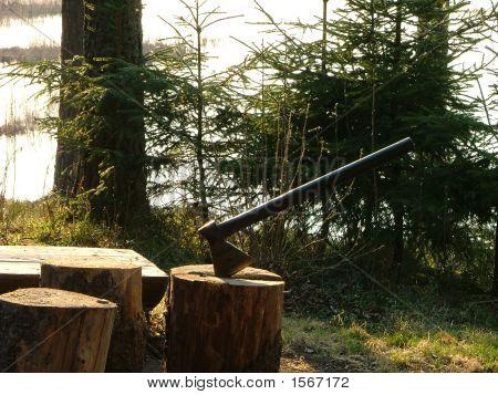 Axt eingezwängt in Baumstumpf
