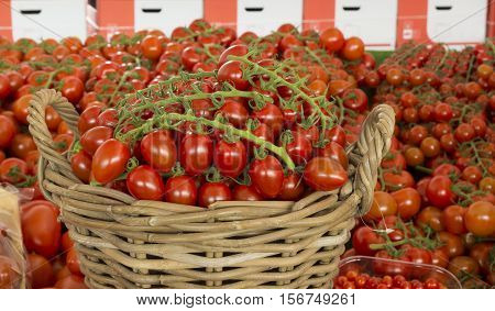 reed basket with red tomatoes amid countless sizes of red tomatoes
