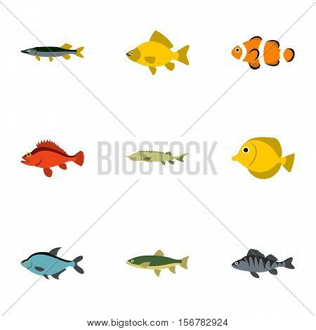 River fish icons set. Flat illustration of 9 river fish vector icons for web