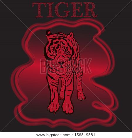 Tiger. Typography design for t-shirts. Vector illustration.