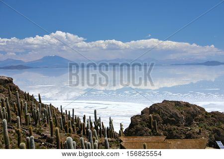 Fisherman's island in the salt flats of salar de uyuni Bolivia