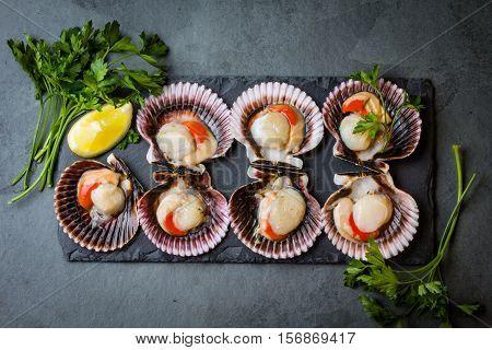 Seafood. Shellfish. Raw scallops with lemon, cilantro and white wine on black stone slate plate